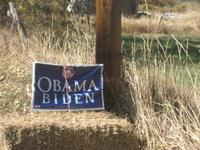 Obama_bale